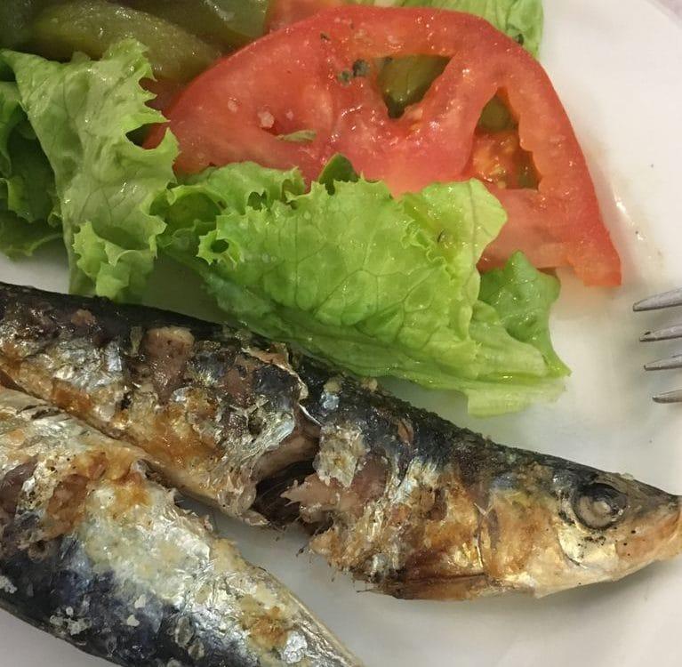 O Pescador sardinhas