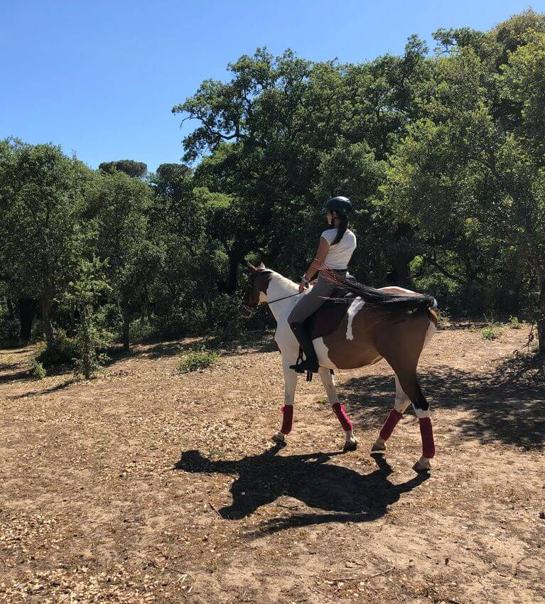 Cavalos na Serra Inspire Setubal Featured