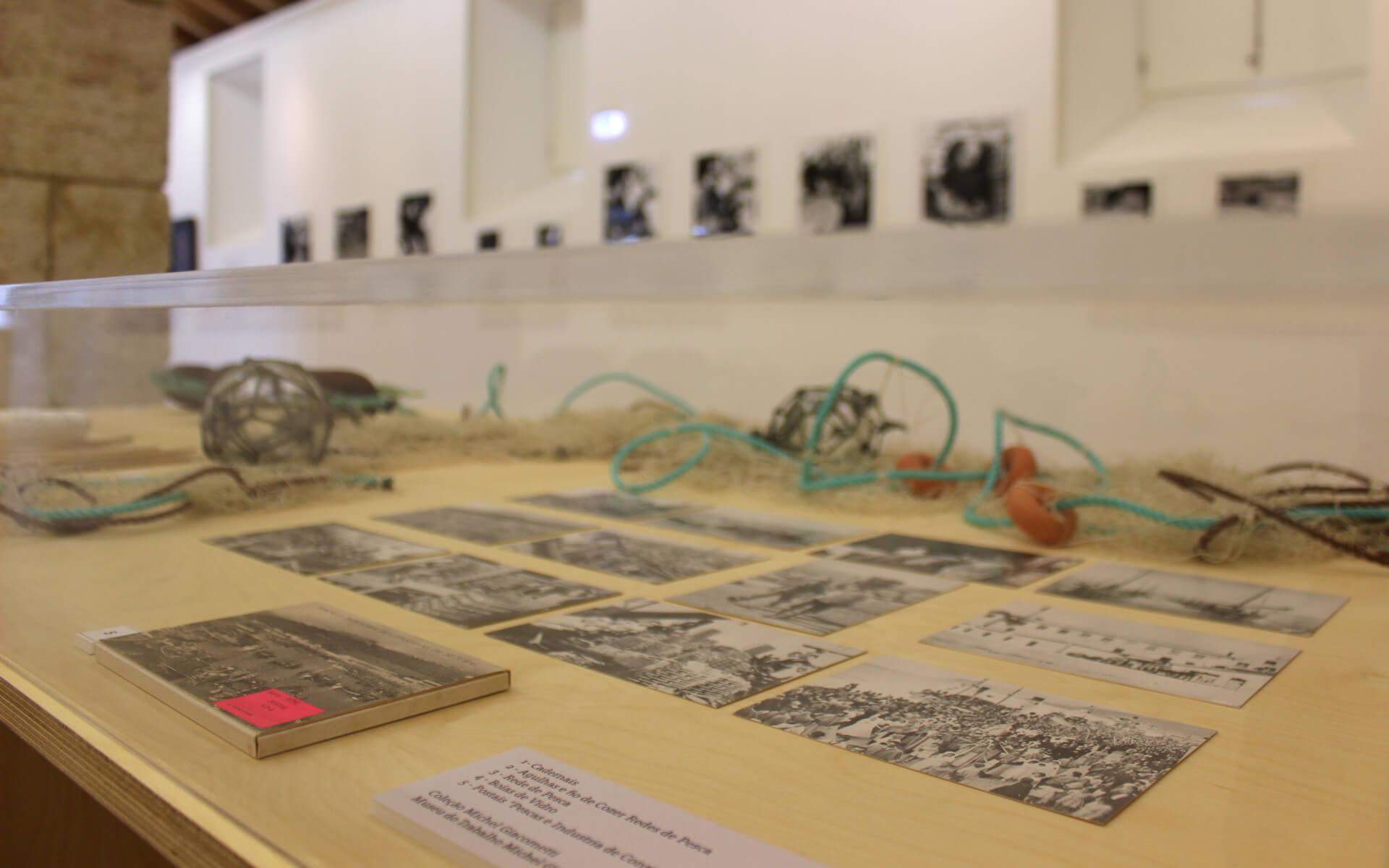 Setubal - Galeria do 11 - Exposição Calafate - Fotografia Ines Antunes Malta