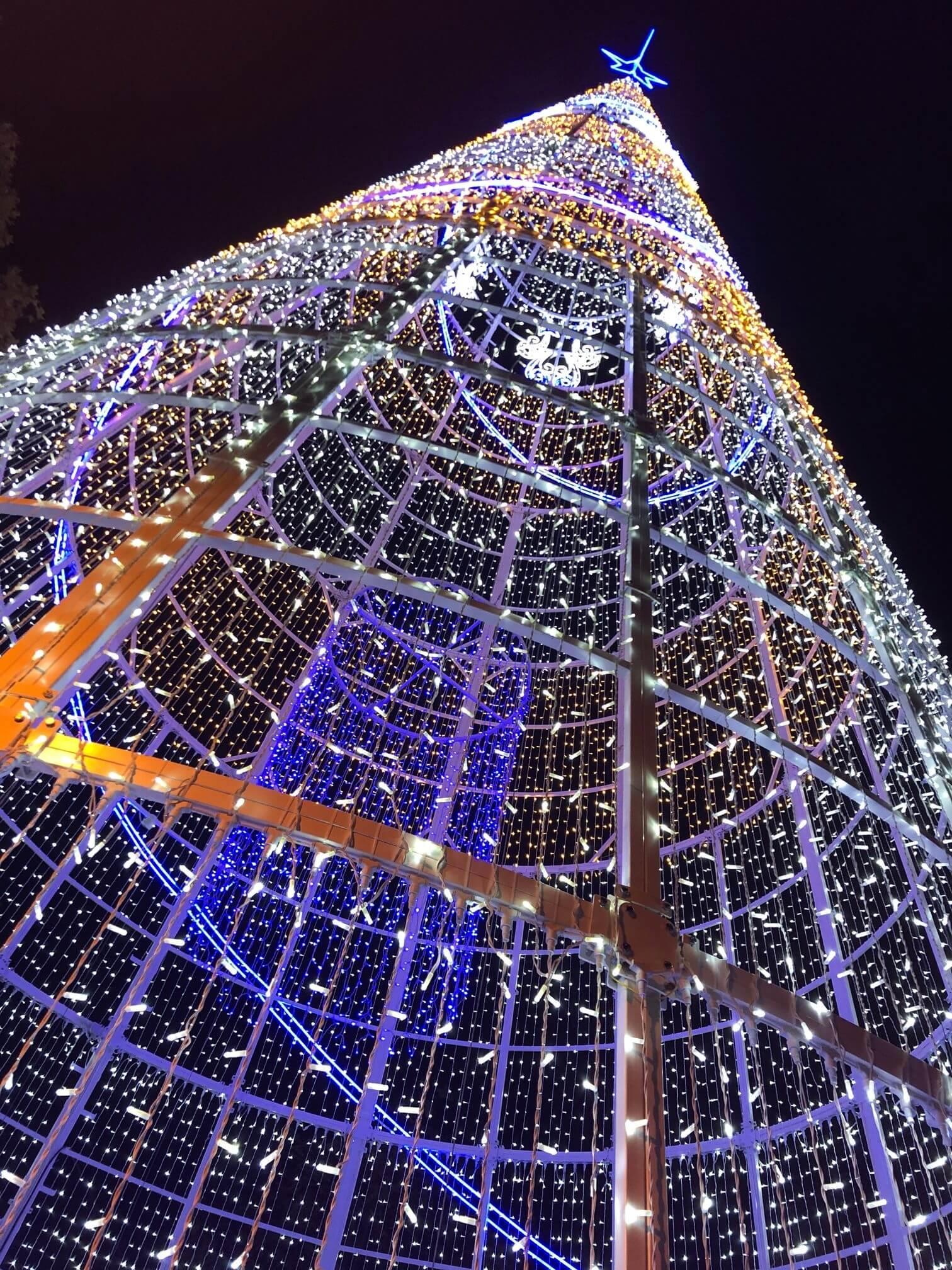 Setubal - Arvore Natal